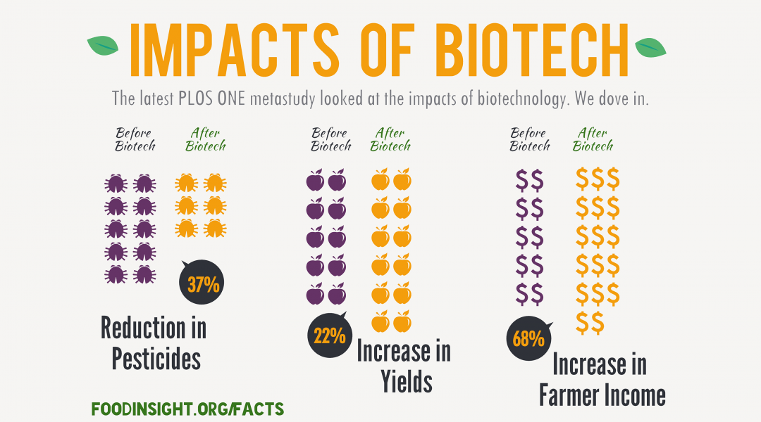 impacts of biotech